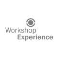 WORKSHOP EXPERIENCE